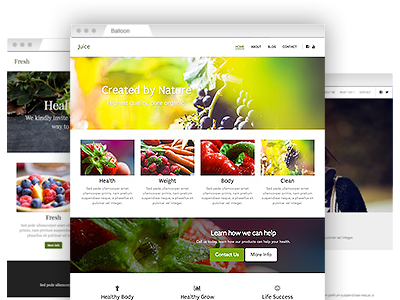 A set of easy–to–customize website templates